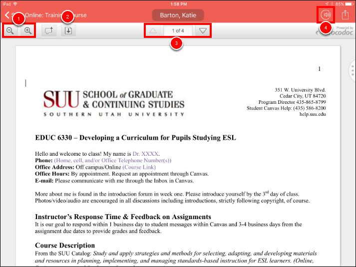 Screenshot of grading an assignment.