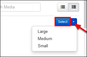Screenshot of the Select button.