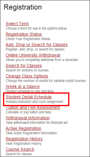 Screenshot of the Student Detail Schedule option.
